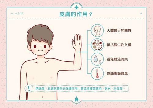 皮膚是人體最大的器官,就像金鐘罩提供身體第一級的保護,它能夠抵抗外界刺激及微生物的入侵,避免體液的流失,具備體溫調節的功能,還能藉由汗腺排泄新陳代謝後的廢物,皮膚也具有冷、熱、觸覺、及痛覺的感覺接受器,所以我們能對外界的刺激作出反應。 一旦受到燒燙傷傷害,人就失去防護罩,於是細菌開始侵門踏戶造成感染,人體脫水、失溫,也失去自我保護的機制。 資料來源: http://www.cbf.org.tw/ugC_Know01.asp