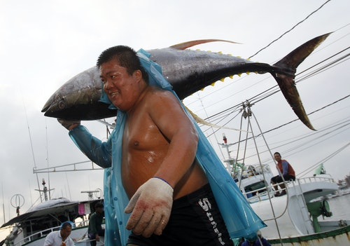A fisherman carries a yellowfin tuna out of his boat at the fishing port of Donggang, Pingtung county, southern Taiwan