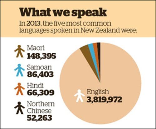 2013年紐西蘭社會五種主要語言:最常說的是英語,數字由上到下遞減分別為毛利語、薩摩亞語、印度文、中文 Photo Credit: New Zealand Herald