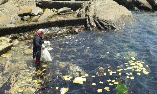 《親親海洋》海女下海採石花菜前的祈福儀式。圖片來源:吳惠君