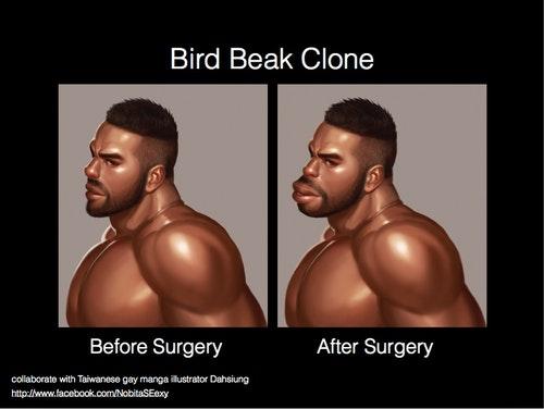 BirdBeakClone