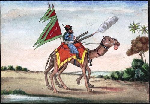 Reminiscences_of_Imperial_Delhi_Camel_Ar