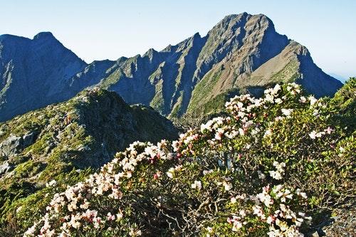 玉山主峰(圖片提供:徐仁修《台灣最後的荒野》)
