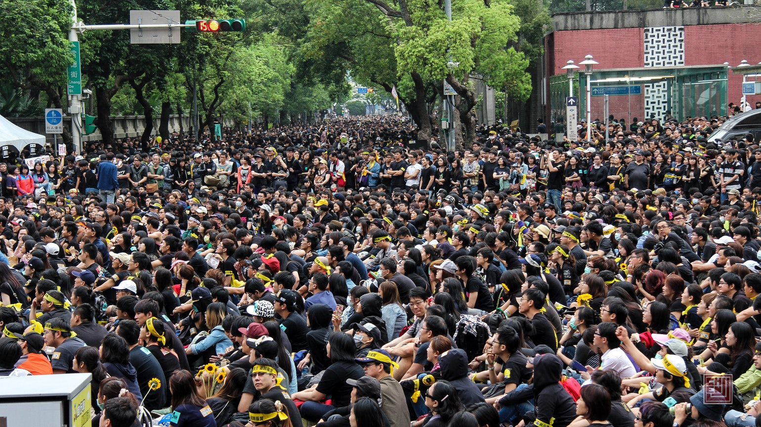 A_crowd_of_Sunflower_supporters_-_Photo_