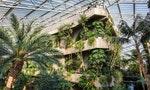 宛如末世場景的巨大溫室、嬉皮群聚的城市異托邦:倫敦四座秘密花園