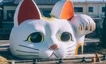 成為貓奴之前,你最好先把口袋準備好:在日本,養貓可能需要貸款100萬日圓