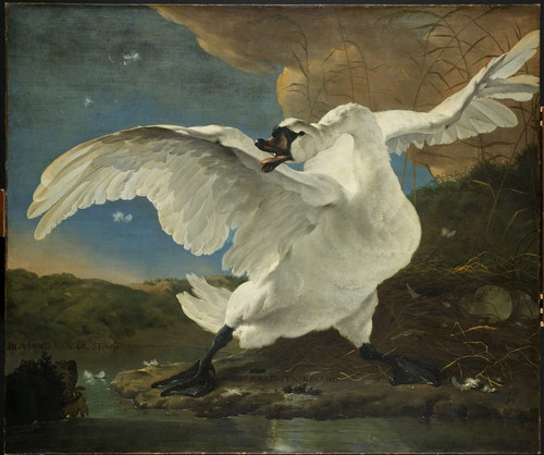 館藏|揚阿瑟林《受驚的天鵝》約1650年