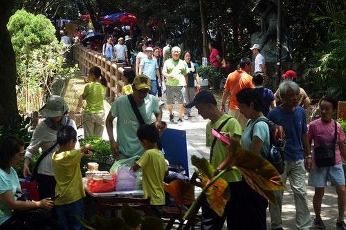 國旅復甦 虎頭山公園遊客如織(3)