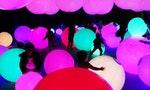 走入沉浸式的夢幻世界:「teamLab未來遊樂園&與花共生的動物們」作品搶先看